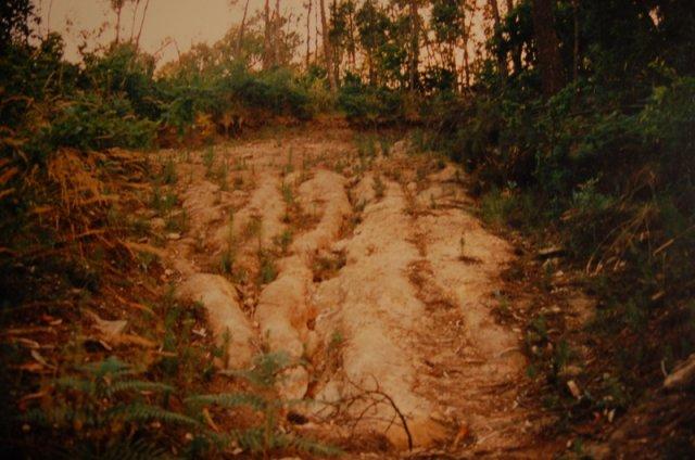 Crater-Cando-de-Arriba-Foto-antigua