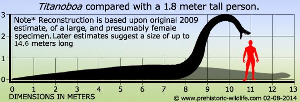 titanoboa-size