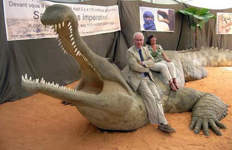 Modelo reconstruido de un Sarcosuchus adulto. Puede observarse no solo la longitud total del animal, sino también su corpulencia el tamaño de su mandíbula.