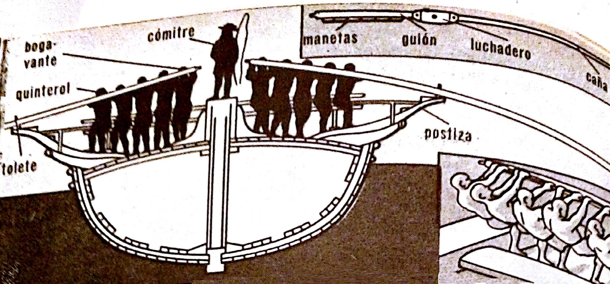 corte transversal de la galera con detalles del remo