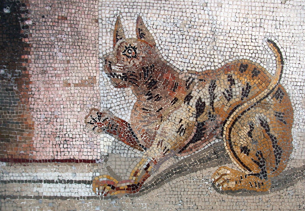 Cat_mosaic