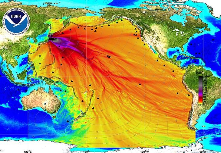 contaminacion fukushima